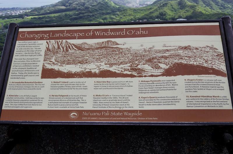 06-18-13 Waikiki, Coconut Island, Kaneohe Bay - IMGP6965.JPG