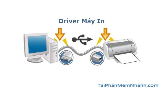 driver máy in HP P1006 là gì