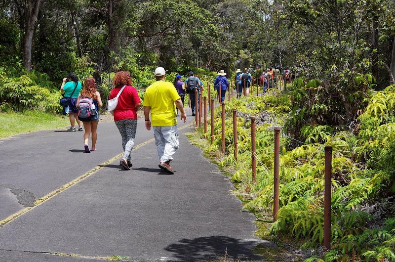 06-20-13 Hawaii Volcanoes National Park - IMGP7803.JPG