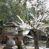 2014 Japan - Dag 8 - jordi-DSC_0610.JPG