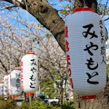2014 Japan - Dag 7 - marjolein-IMG_0987-0620.JPG