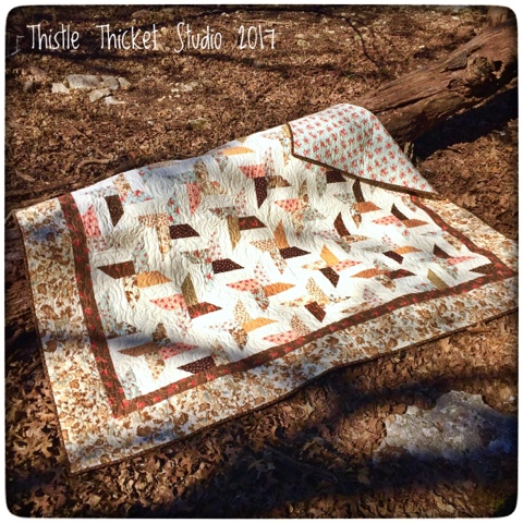 Thistle Thicket Studio, all stars quilt pattern, quilts, quilting
