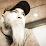 Nate Kauffman's profile photo