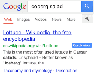 Google Search Quick View