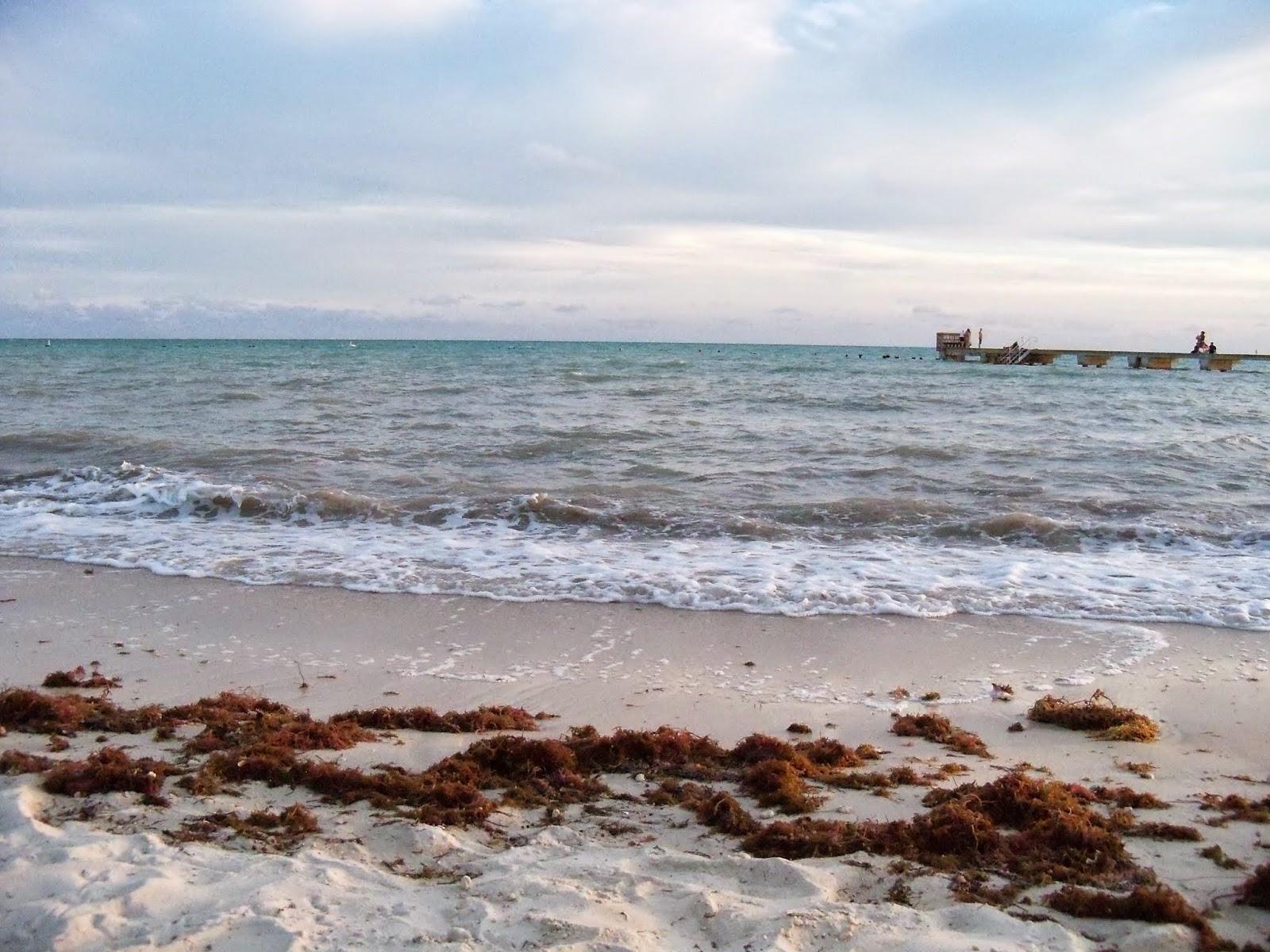 Key West Vacation - 116_5562.JPG