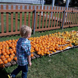 Pumpkin Patch 2015 - 100_0400.JPG