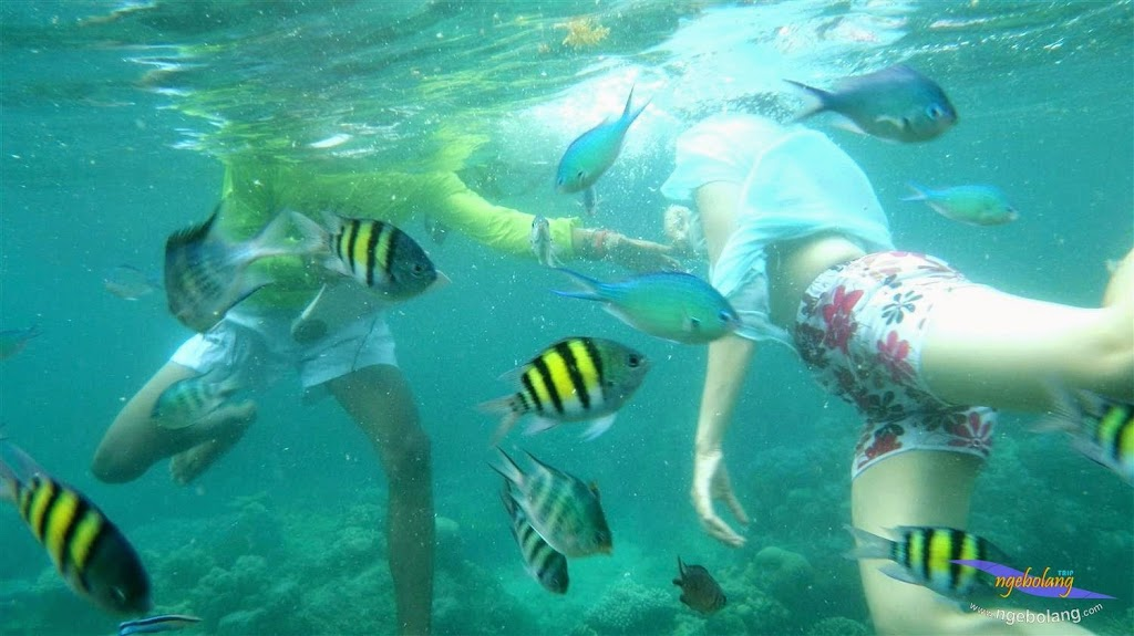 Pulau Harapan pentax 21-22 Maret 2015  01