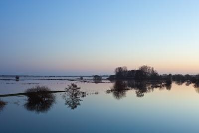 Hamme-Hochwasser bei Tietjenshütte