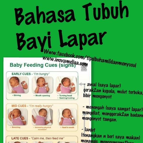 Bahasa Tubuh Bayi Lapar