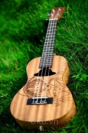 luffy ukulele