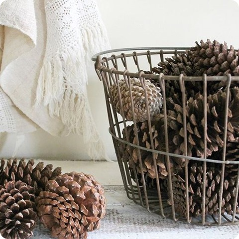 pinecones in basket
