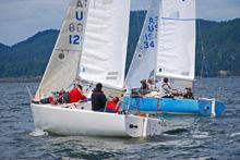 J/24s sailing upwind in Canada