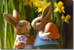 blur-bunnies-colorful-69816