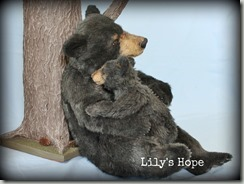 Lily's Hope tag