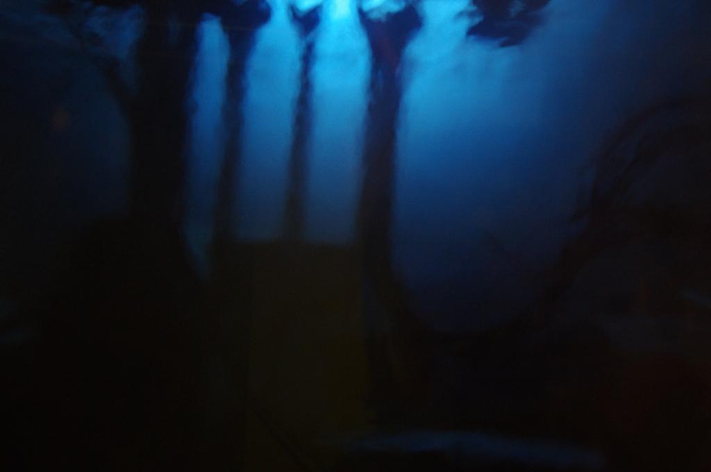 Belsk - Świerk 2011 (Kiń) - PENX2401.jpg