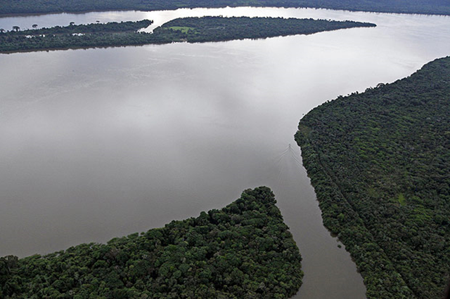 Aerial view of the National Forest (Flona) of Jamanxin, in the southwest of the state of Pará, Brazil. Nacho Doce / Reuters