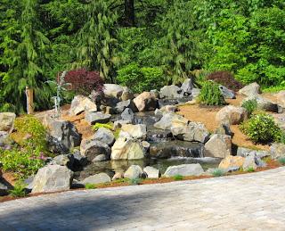 waterfall-koi-pond-siedel2