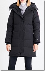 Canada Goose Shell and Down parka