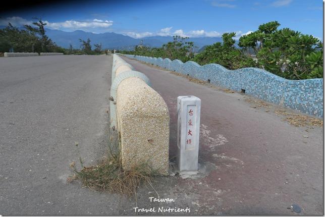 台東山海鐵馬道 台東環市自行車道 (81)