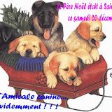 le Pére Noël à l'Amicale Canine de Saint Vrain
