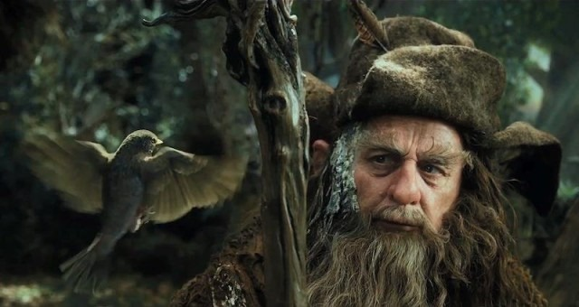 [Radagast-bird%255B4%255D.jpg]