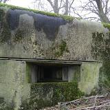 Position Fortifiée de Namur et recensement chauve-souris