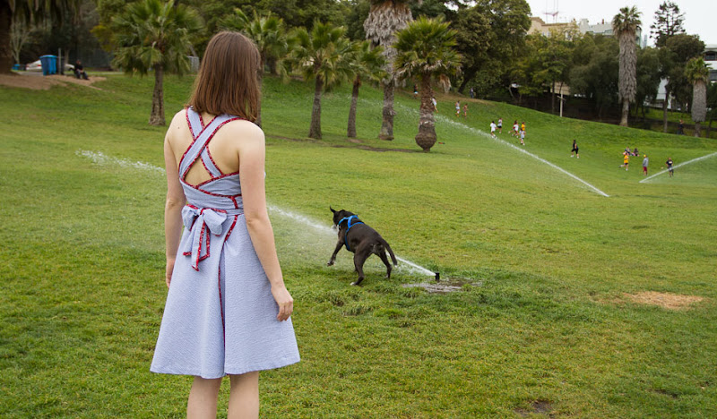 Blue Seersucker Wrap Dress - Park Gazing