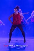 Han Balk Voorster Dansdag 2016-2977.jpg