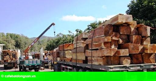 """Hình 1: Nhiều doanh nghiệp gỗ """"chết đứng"""" vì phụ thuộc Trung Quốc"""