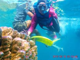 pulau harapan, 15-16 agustus 2015 sjcam 43