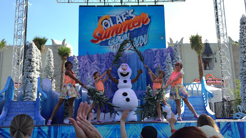 2015 Frozen Summer Fun