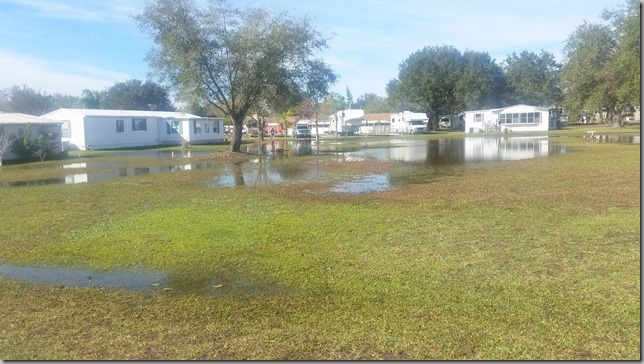 Mobil Home Lots for Rent under water.