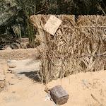 Mosquée de palmeraie