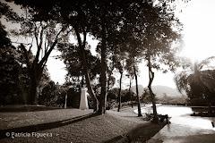 Foto 0029pb. Marcadores: 30/07/2011, Casamento Daniela e Andre, Cristina Casteloes, Fotos de Vestido, Rio de Janeiro, Vestido, Vestido de Noiva