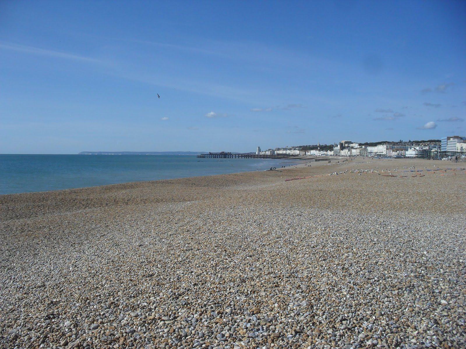 SDC11577 Hastings Beach