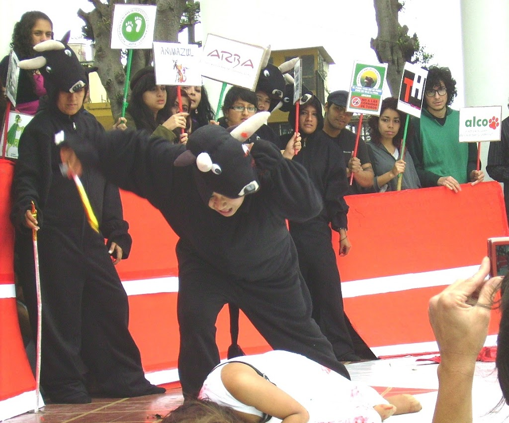 homomaquia2010ALCO (142)