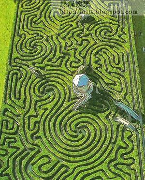 朗利特莊園的全球最長迷宮,由逾萬株高七呎的樹組成。(互聯網圖片)