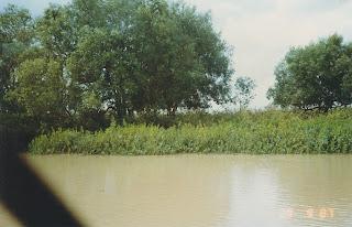 1160Adelaide River