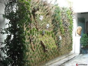 mur de verdure dans un restaurant a avigon vaucluse