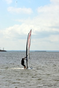 Windsurfer on the Bay