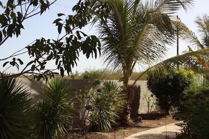 on s'eclate au .... Senegal IMG_1036