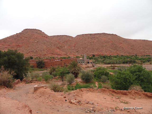marrocos - Marrocos 2012 - O regresso! - Página 5 DSC05339