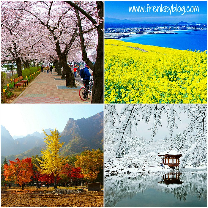 Spring, Summer, Autumn, Winter in Korea