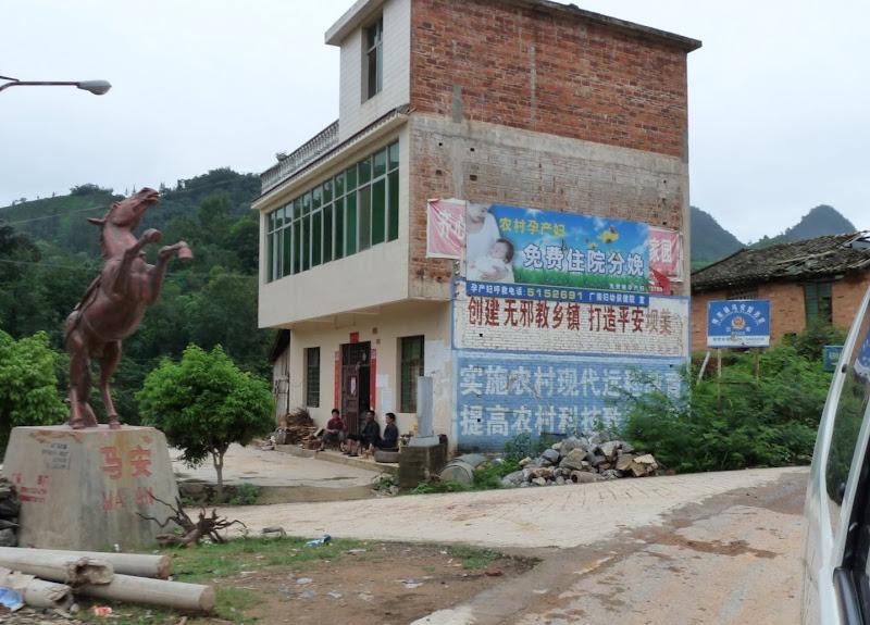 Chine.Yunnan Wen shan et BA MEI 1 - P1260861.JPG