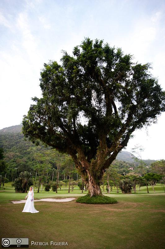 Foto de casamento 0270 de Christiane e Omar. Marcações: 17/12/2010, Casamento Christiane e Omar, Rio de Janeiro.