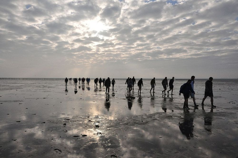 wadden-sea-hiking-10