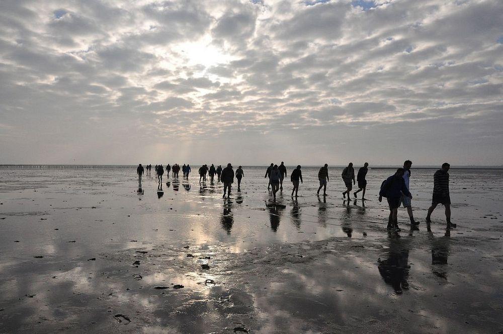 wadden-sea-hiking-10