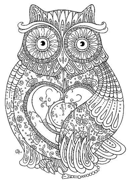 Owl  Owl Coloring Pages For Adults