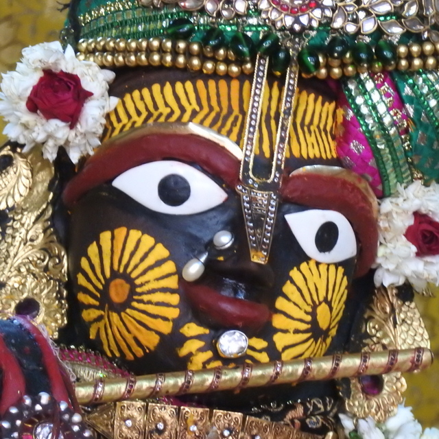 Radha Govind Devji Deity Darshan 02 Mar 2016 (5)