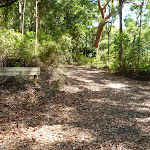 Trail and sign in Blackbutt Reserve (400492)